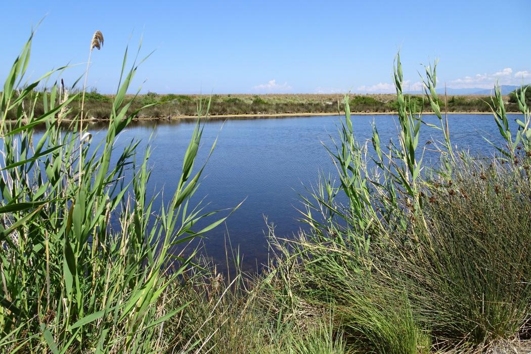 Lago Marinello